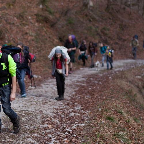Bild zum Weblog ADWA Linz - Rucksackwandern auf die Ahornalm